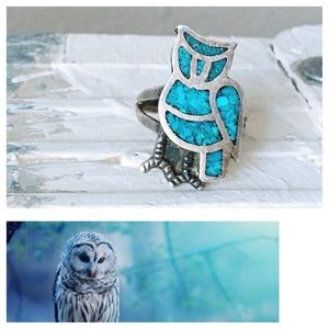 ❗️🆕❗️ Vintage Owl Ring Native American Turquoise